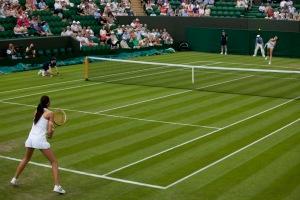 Wimbledon 2014a_12