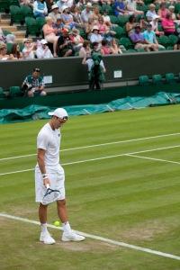 Wimbledon 2014a_19
