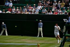Wimbledon 2014a_22