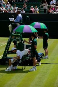 Wimbledon 2014a_3