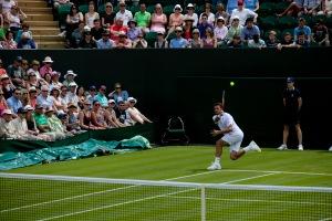 Wimbledon 2014a_6