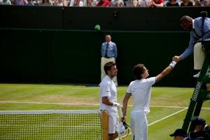 Wimbledon 2014a_8
